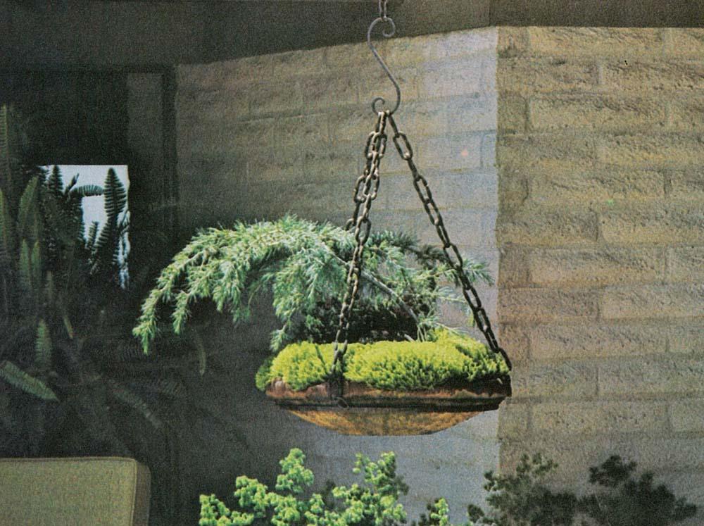 Sunset Ideas For Hanging Gardens The Secret Garden