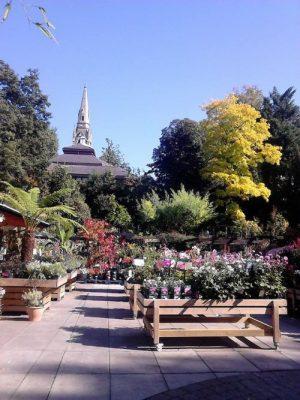 The Secret Garden 2016