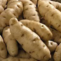 Albert Barlett Anya potatoes
