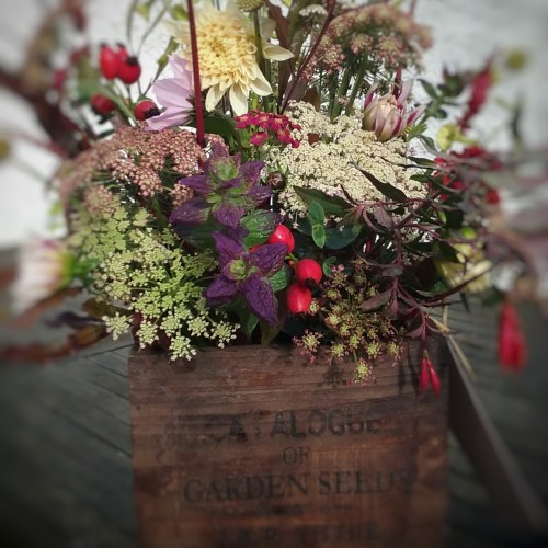 Autumn Box of Flowers