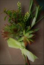 succulent buttonhole