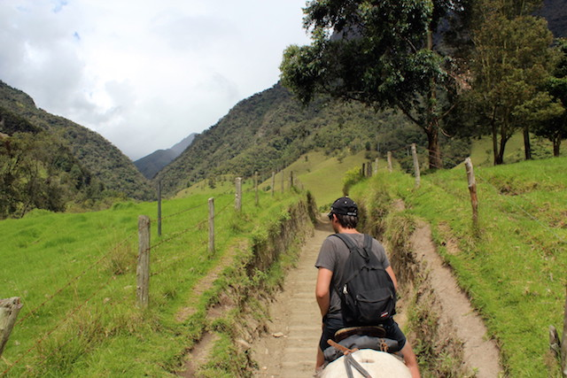 Horse-riding in Cocora Valley, Colombia
