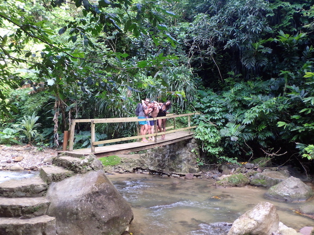 Hot springs in the jungle in St. Lucia