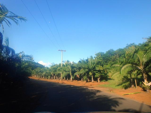 Driving through Chamarel, Mauritius