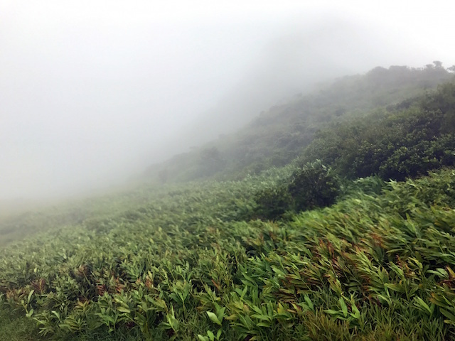 Hiking Le Pouce mountain in Mauritius