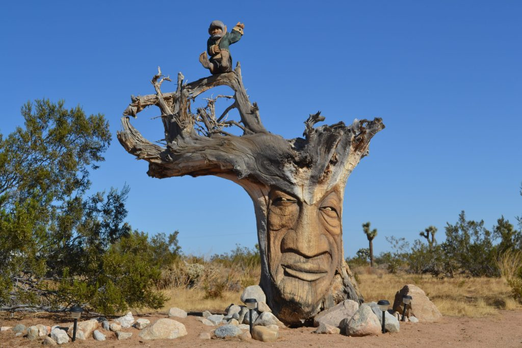 Treebeard-Groot-yucca-valley-joshua-tree-national-park-adventure-tour