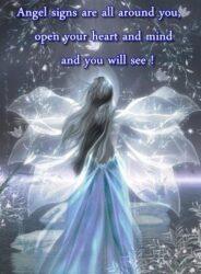 Finding New Affiliates Finding New Affiliates earth angels