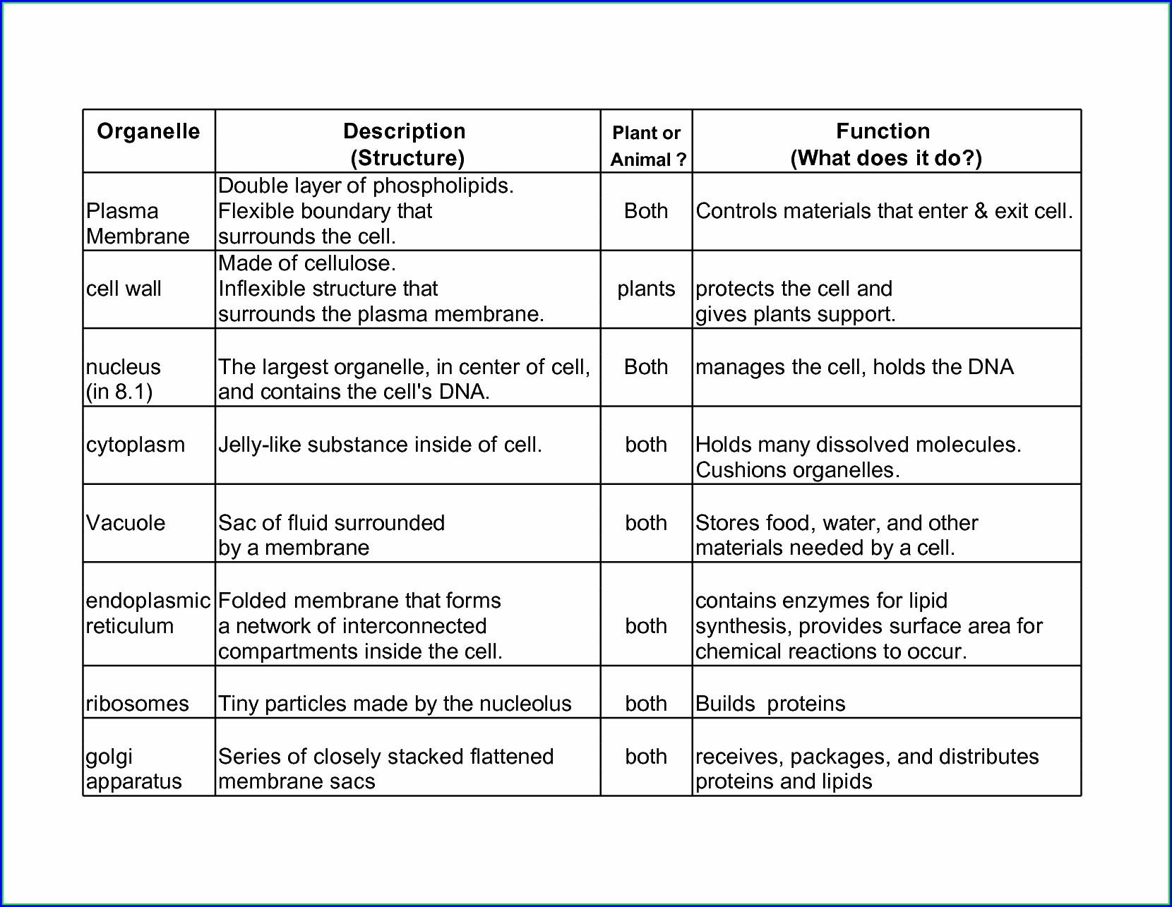 Rosa Parks Timeline Worksheet Worksheet Resume Examples