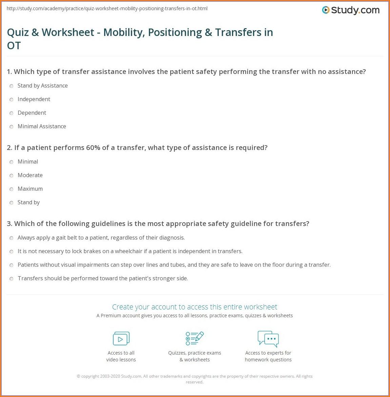 Food Chain Worksheet Year 3 Worksheet Resume Examples