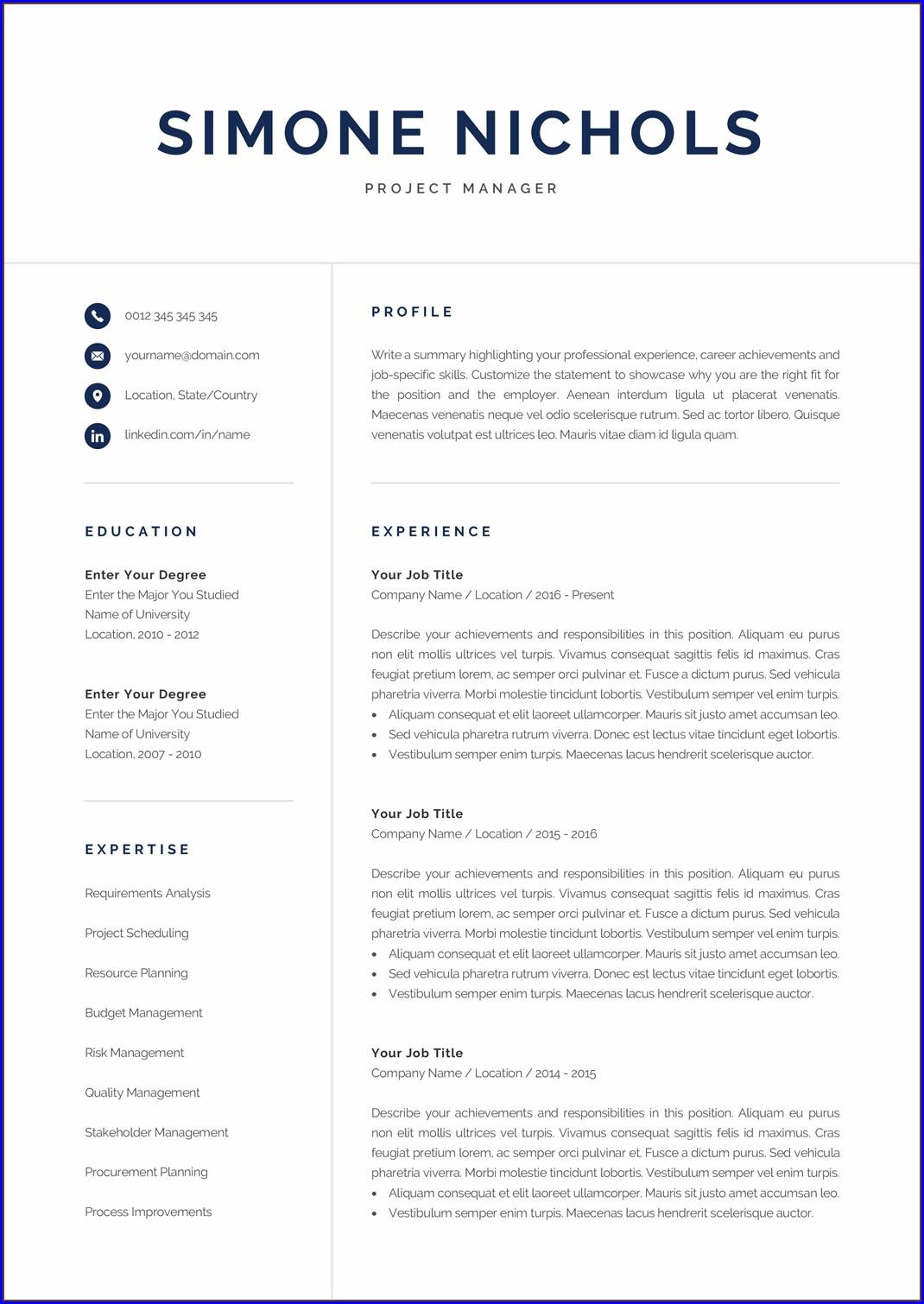 Nice Professional Resume Template Templates 1 Resume