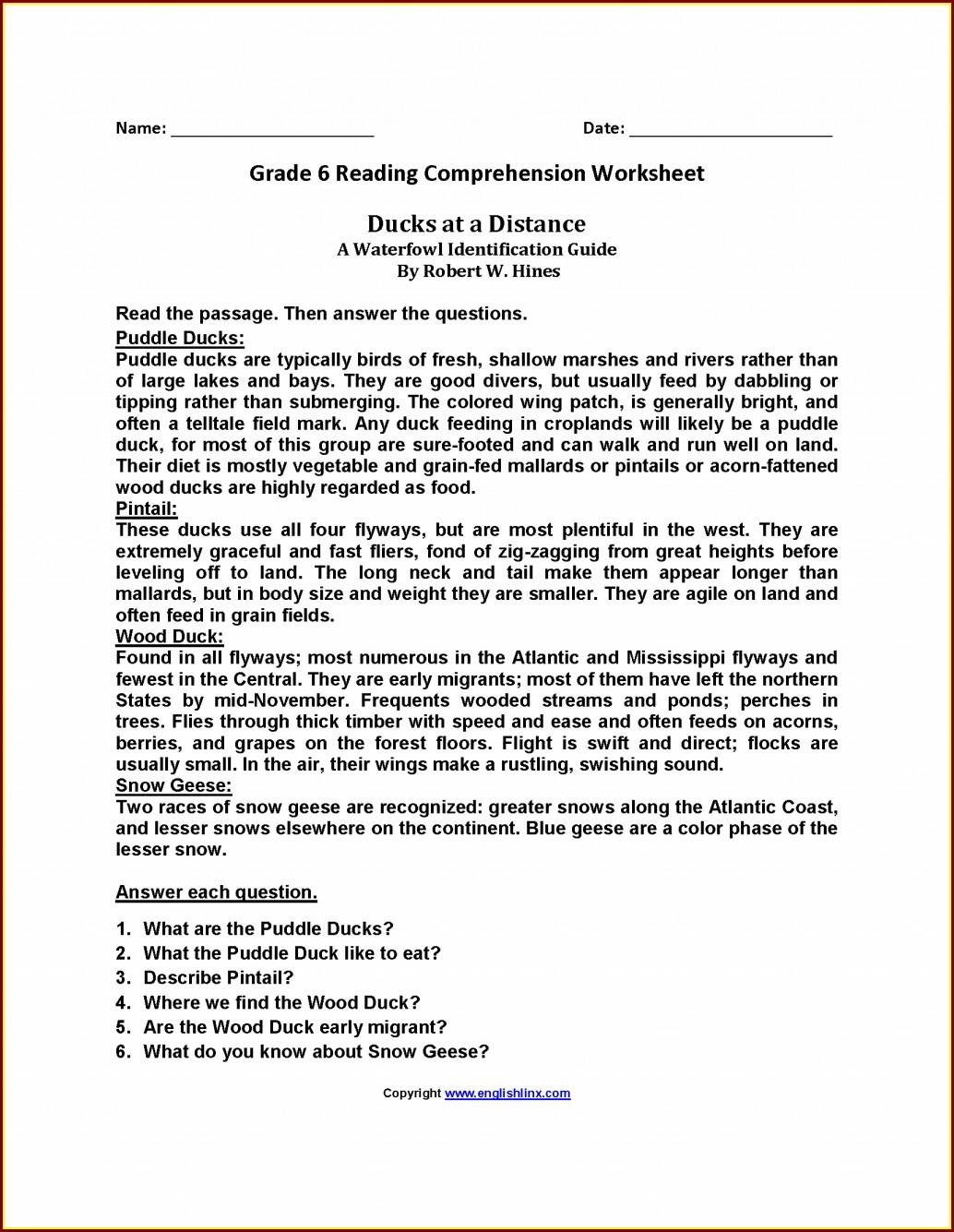 Comprehension Passage Worksheet For Grade 2 Worksheet
