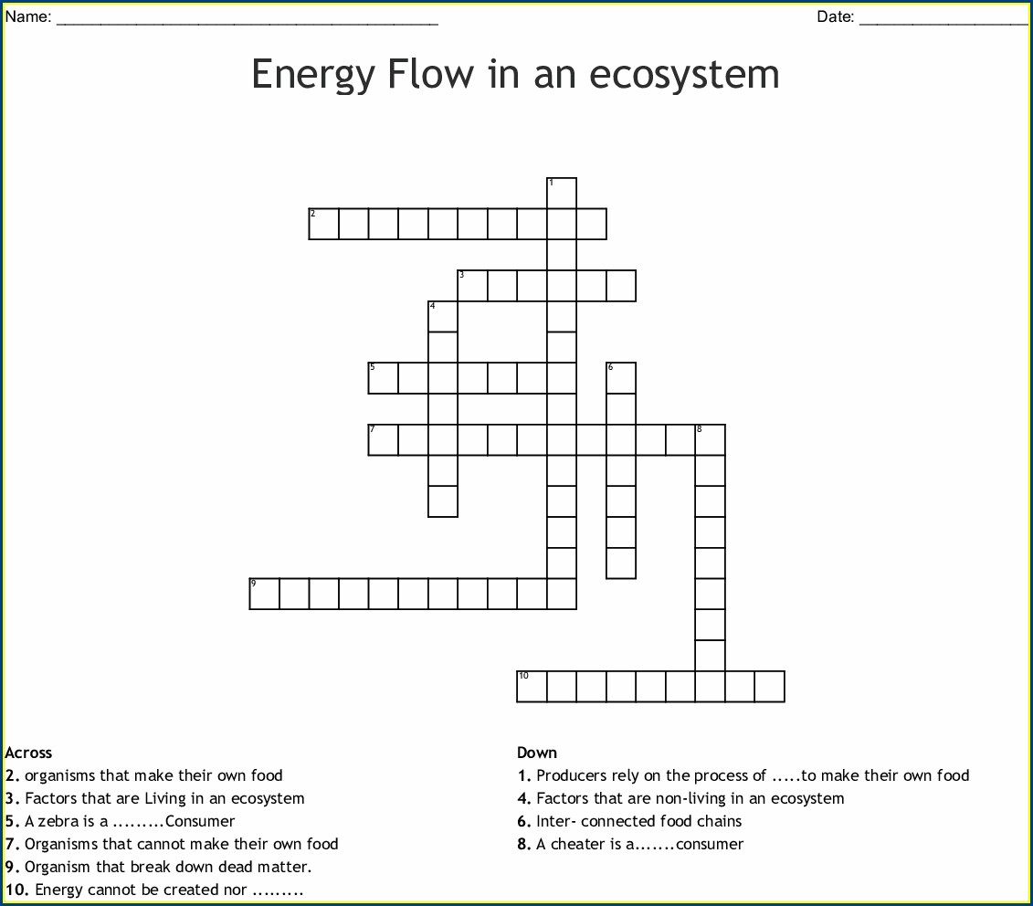 Food Chain Worksheet Answers Enchanted Learning Worksheet