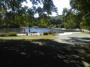 county park