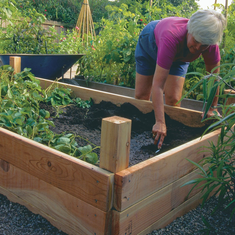 Above Ground Gardening Containers