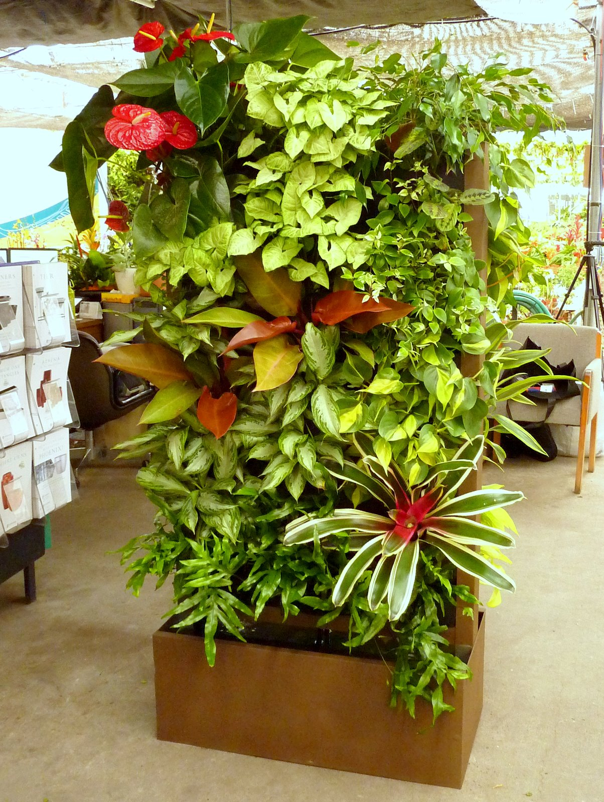 10 Best Plants To Grow For Vertical Garden The Self