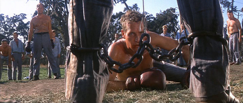 Cool Hand Luke fight