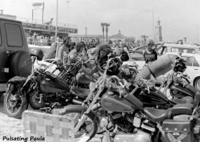 PULSATING PAULA DAYTONA BEACH BIKE WEEK MOTORCYCLE HARLEY MC