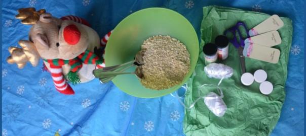 reindeer teddy with ingredients for reindeer dust