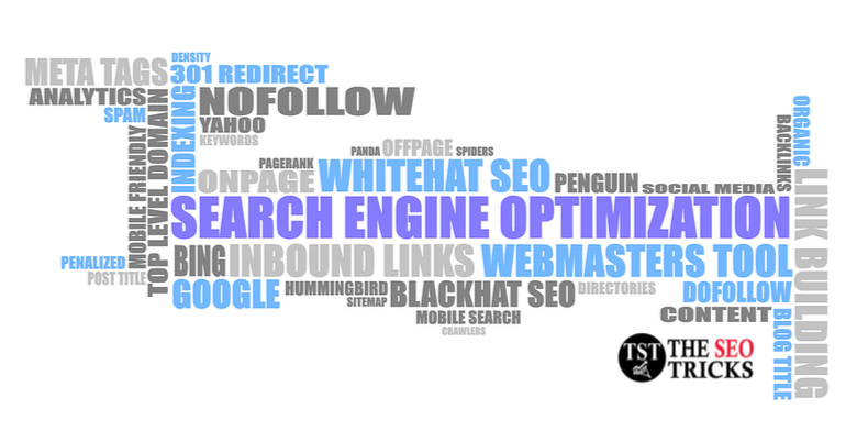 type of seo techniques of seo - theseotricks