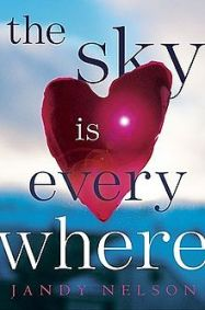 220px-the_sky_is_everywhere