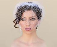Jessie_vintage_birdcage_bridal_veil__17524.1418421866.190.158