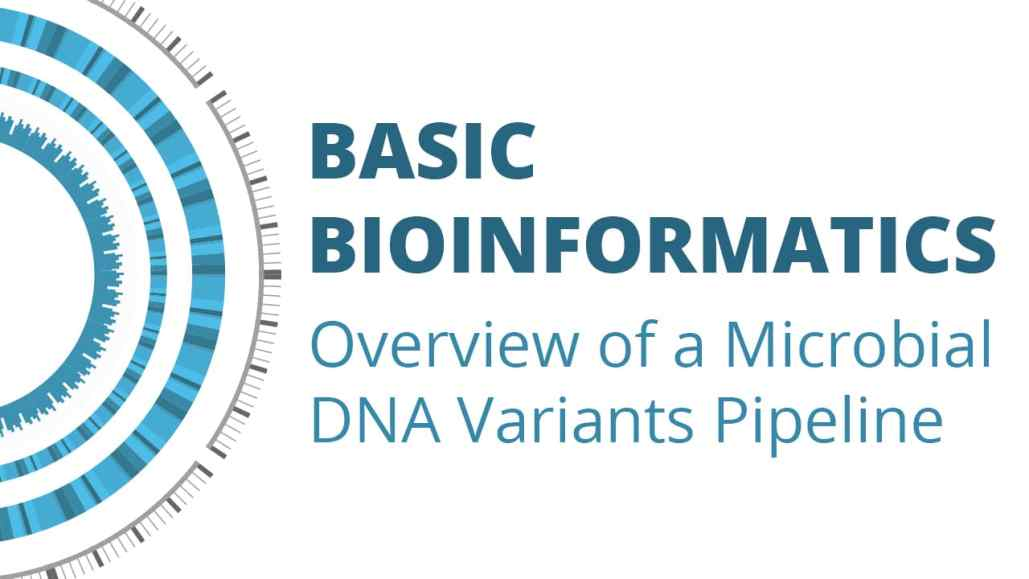 Basic Bioinformatics: Overview of a Microbial DNA Variants Pipeline