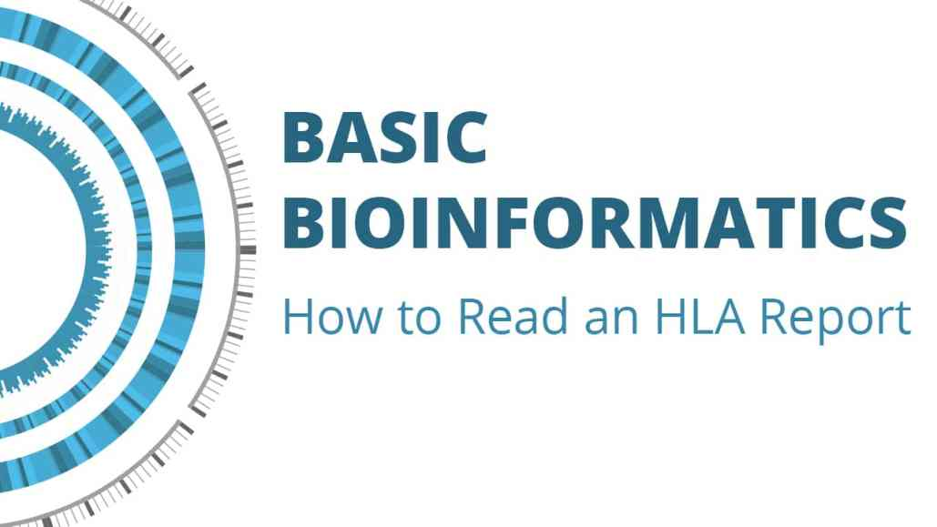 Episode 8: How to Read an HLA Report