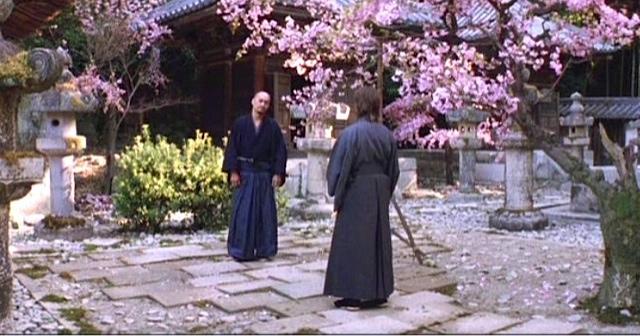 samurai cherry blossoms