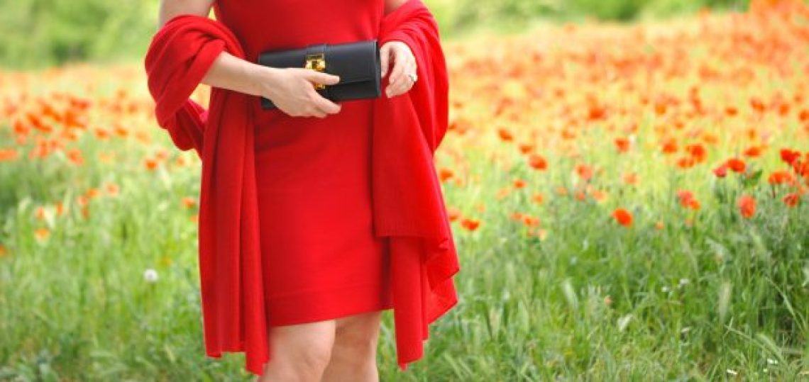 red wrap and hermes medor clutch