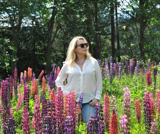 white shirt and lupines
