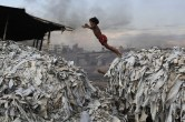 A child jumps on the waste products that are used to make poultry feed as she plays in a tannery at Hazaribagh in Dhaka, Bangladesh, in 2012.