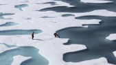 Warm temperatures and winds drove record declines in sea ice at both polar regions