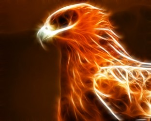 phoenix ashes mythical reborn bird pheonix paintings fire egyptian 3d eagle drawings oil cool symbol fiery called wallpapers transformation creature