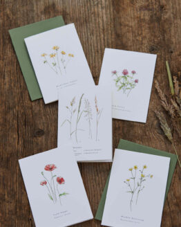 annie brougham summer card set