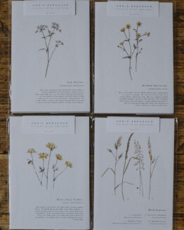 annie brougham meadow prints