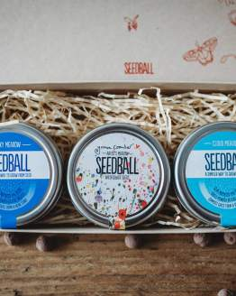 seedball tins gift set