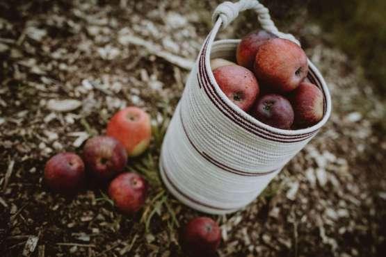 tall berry basket alt shot