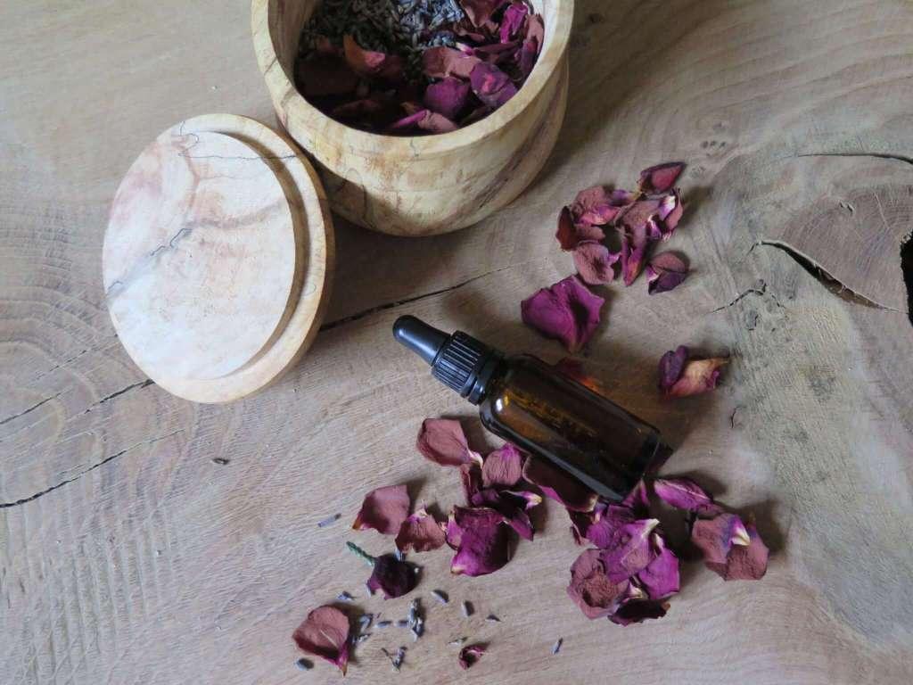 wild rose oil