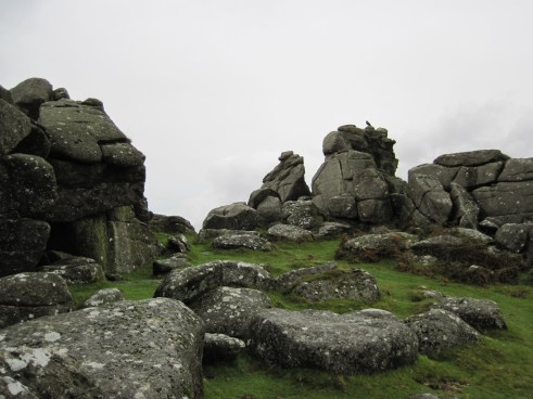Bonehill on Dartmoor.