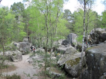 The Roche aux Sabots sector in the Trois Pignons area of Fontainebleau forest.