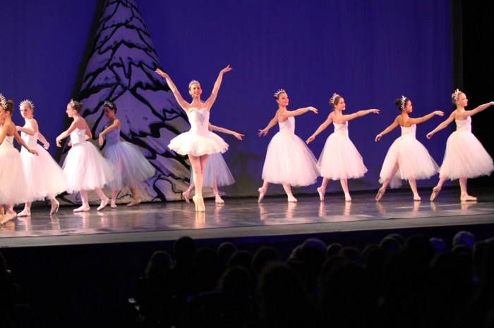 The 2013 Nutcracker performance