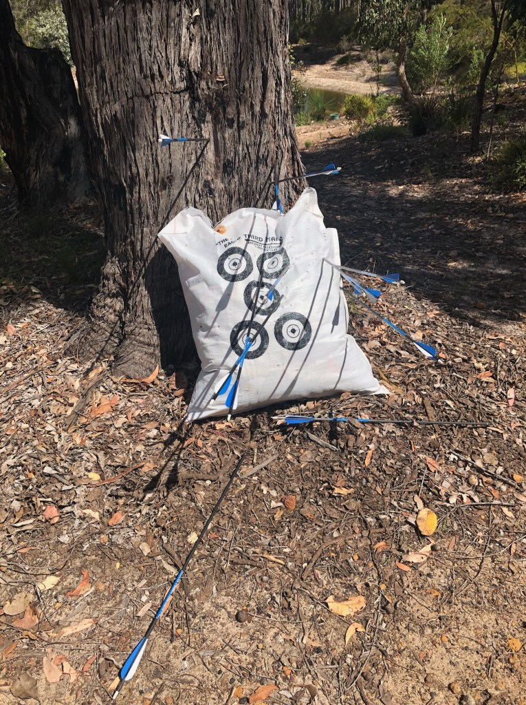 A sack which has been stiffed with scraps sits at the foot of a tree. Blue tipped arrows have pierced the bag, and a few other arrows have hit the ground and the tree trunk.