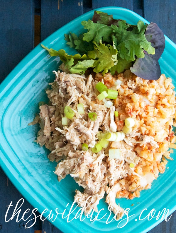 Paleo Chicken and Mexican Rice Bowl