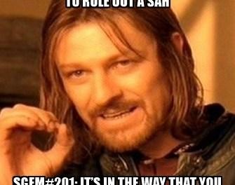SGEM Memes #201
