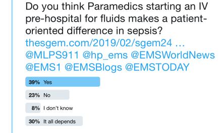 SGEM Twitter Poll #246