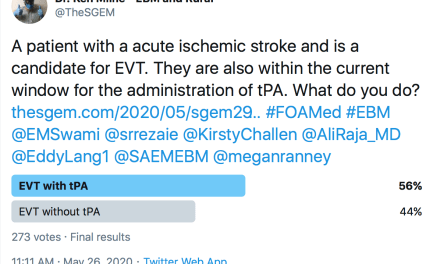 SGEM Twitter Poll #292