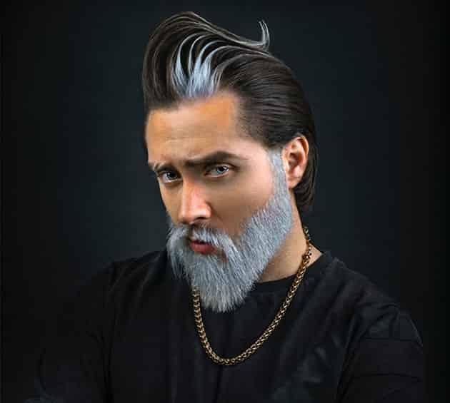 Traditional long beard