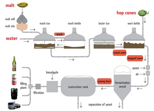 A flow chart of the brewing process used by Budweiser Budvar.