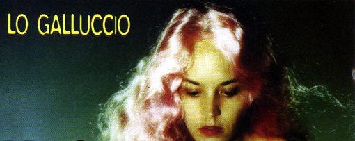 Lo Galluccio | Miki Navazio | Brad Jones | Michael Evans | Being Visited