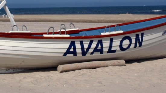 Avalon Beach Information